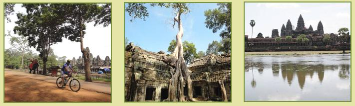 Angkor Wat Cycle Tour in a Day